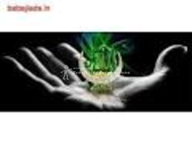 FREE  SEVA  LOVE  MARRIAGE SPECIALIST BABA JI 91  9950087336