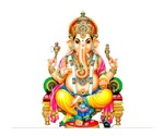 Famous Indian Astrologer +91-9780095453