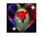 LOVE   VASHIKARN  Specialist BABA +91-99500-87336